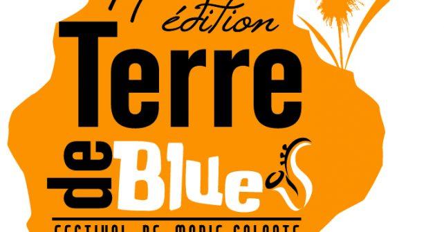 Hébergements gîtes Terre de Blues Marie Galante